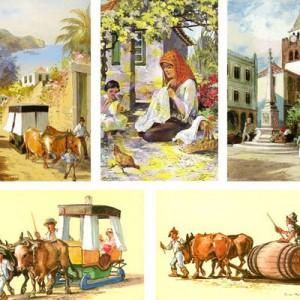 Madeira Collage
